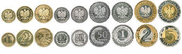 Фото 7. Монеты – гривны и злотые
