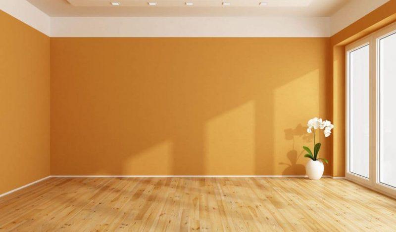 Рис. 2. Пустая комната с цветком. Источник сайт SPbNOVOSTROYKA.RU