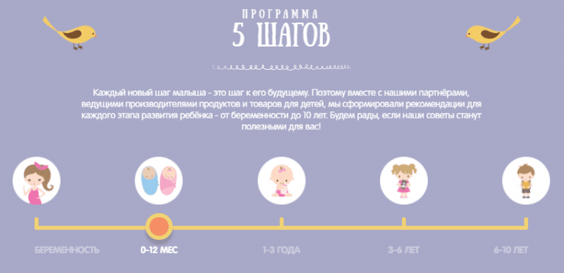 Рис. 5. Программа «5 шагов»