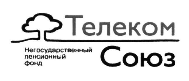 Изображение - Нпф телеком-союз NPF-Telekom-Soyuz