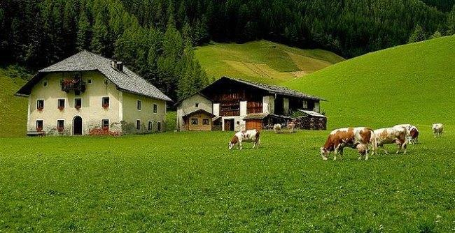 Рис. 8. Ферма в холмах