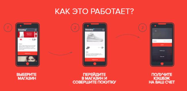 Рис. 6. Мобильное приложение Kopikot