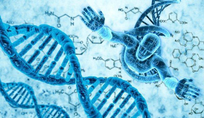 Рис. 2. ДНК человека