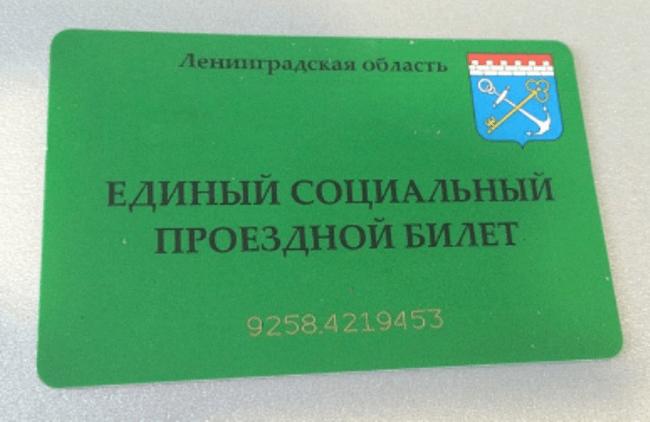 Рисунок 1. Пенсионный проездной билет в Ленинградской области