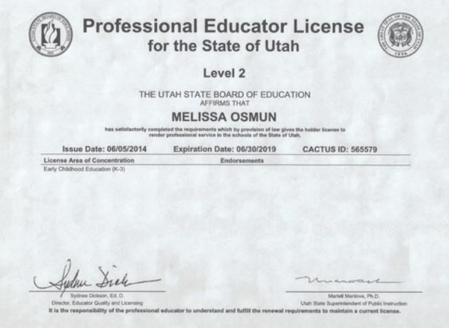 Рисунок 7. Пример лицензии в штате Юта