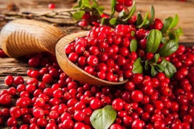 Рисунок 1. Клюкву заслуженно считают одной из самых полезных ягод.