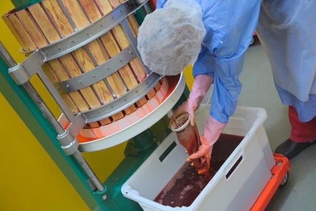 Рисунок 4. Для получения из ягоды сока ее отжимают на прессе.