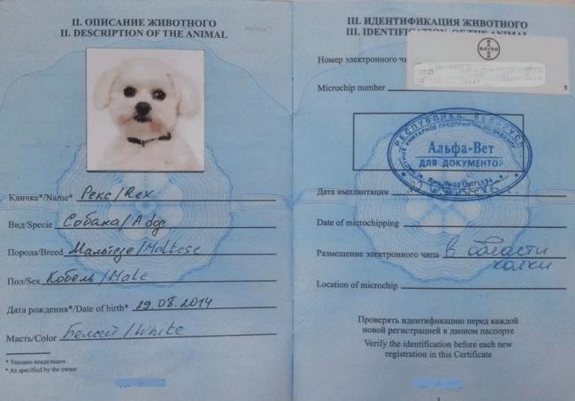 Рис. 2. Современный международный ветеринарный паспорт