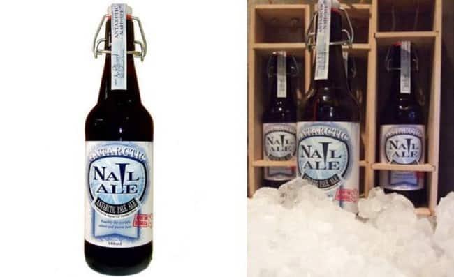 Рис. 5 Пиво Antarctic Nail Ale