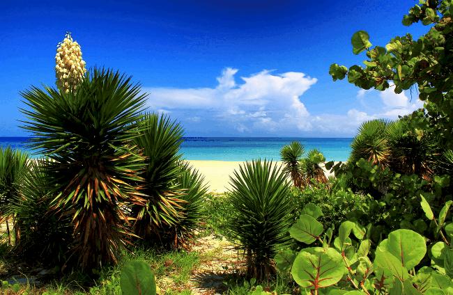 Рис. 4. Куба