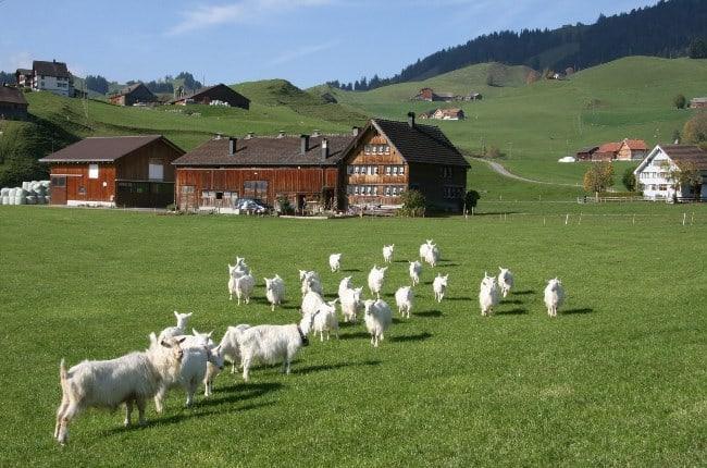 Рис. 1. Швейцарские фермы
