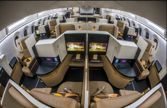 Рис. 18. Boeing 787-9 Etihad