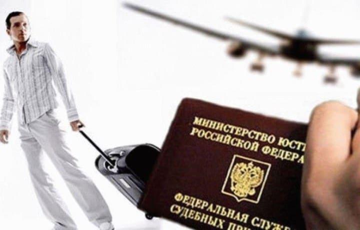 Рис. 1. Запрещение вылета за пределы РФ