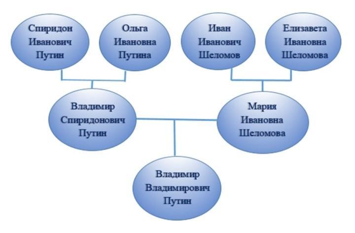 Рис. 2. Генеалогическое древо Владимира Путина