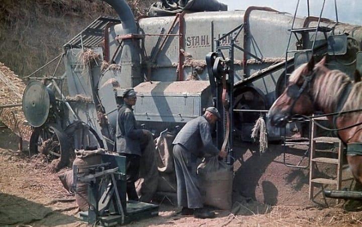 Рис. 2. Уборочная пора в Мекленбурге. 1939