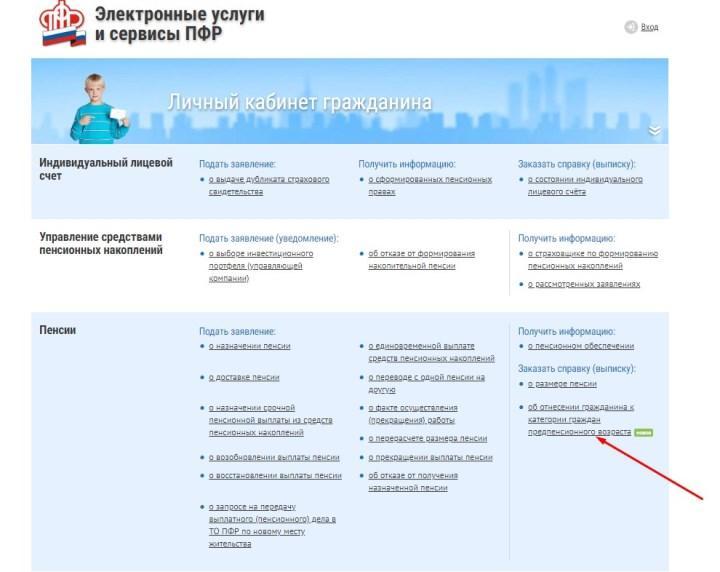 Рис. 3. Оформление статуса ЛППВ в личном кабинете гражданина на сайте ПФР