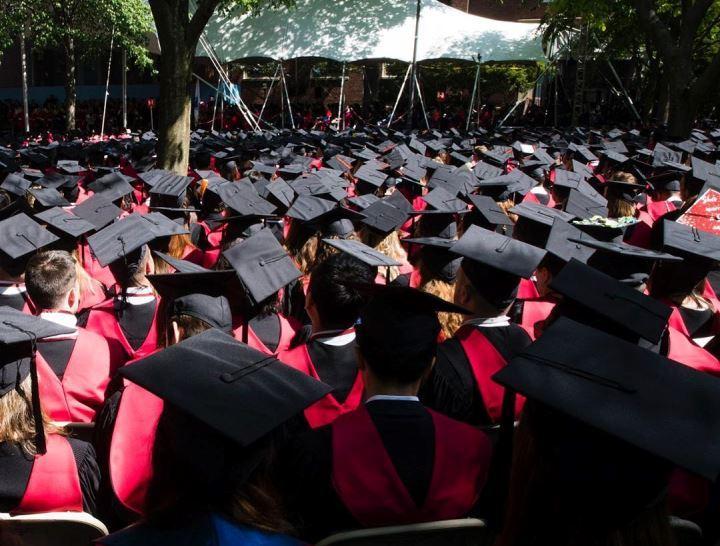 Студенты Гарварда