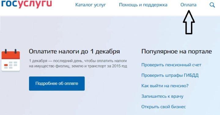 Скриншот с сайта Госуслуги