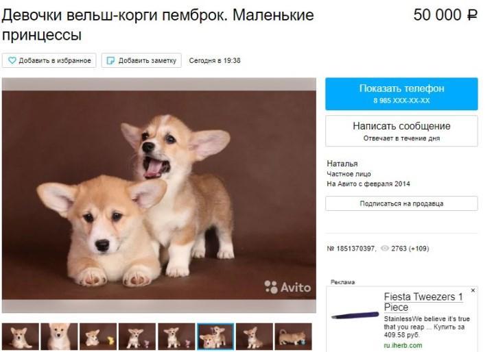 Скриншот с «Авито»