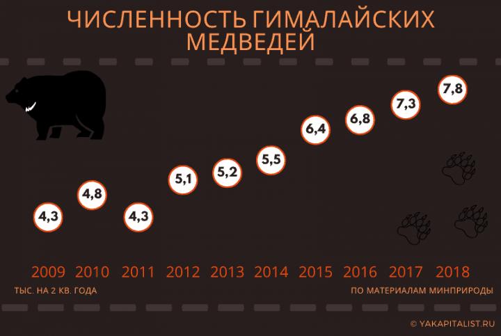 Численность гималайских медведей (1)