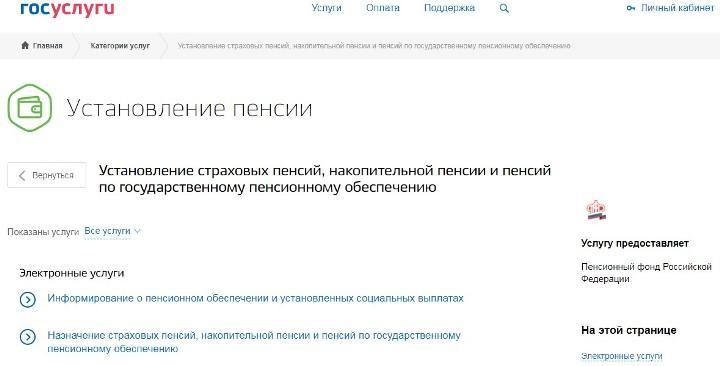 Скриншот страницы официального сайта Госуслуги