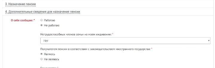 7.Заполняем раздел «Дополнительные сведения».
