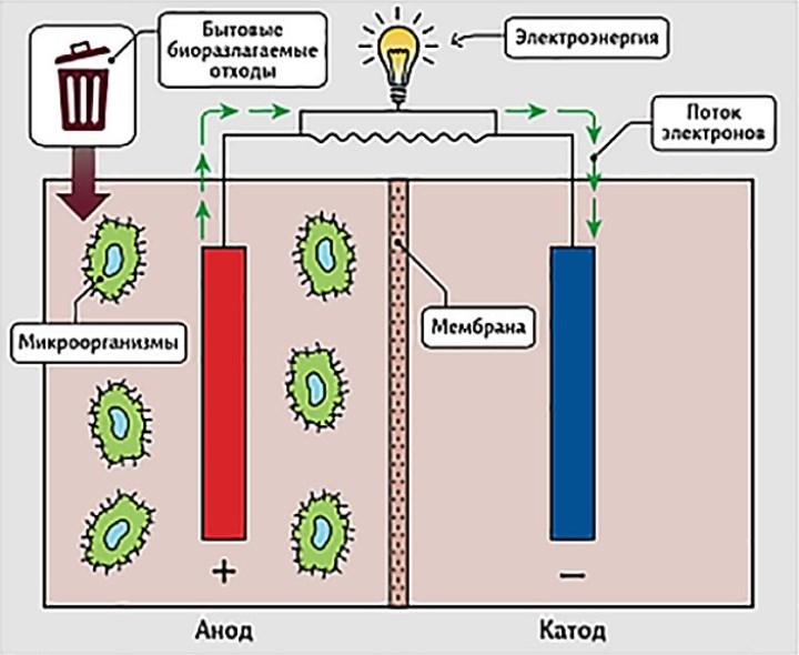 принцип работы микробного биотопливного элемента